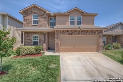 San Antonio TX Single Family Home New: $208,993
