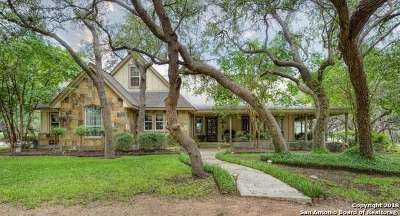 Boerne Single Family Home For Sale: 336 State Highway 46 E