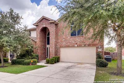 San Antonio Single Family Home New: 6218 Palmetto Way