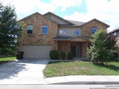 San Antonio Single Family Home New: 8439 Cheyenne Pass