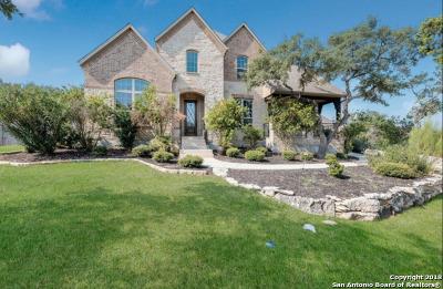 San Antonio TX Single Family Home New: $699,899