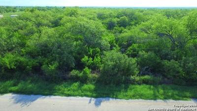 Pleasanton Residential Lots & Land For Sale: E Trail
