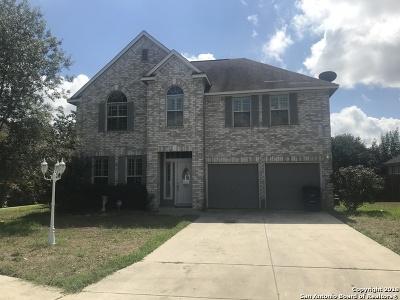 Single Family Home For Sale: 547 Raven Ridge