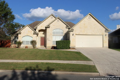 Kendall County Single Family Home For Sale: 317 Oak Knoll Circle