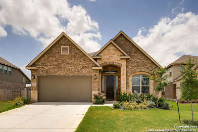 Cibolo Single Family Home For Sale: 937 Kauri Clfs