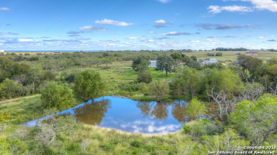 Guadalupe County Farm & Ranch For Sale: 003 Gold Dust