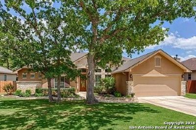 Boerne Single Family Home Active Option: 209 Lone Tree