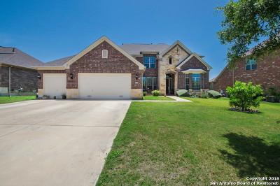 Alamo Ranch Single Family Home For Sale: 12514 Tersk