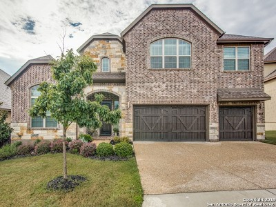 San Antonio Single Family Home For Sale: 18815 Real Ridge