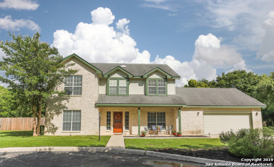 Boerne Single Family Home For Sale: 114 Greyhound Circle