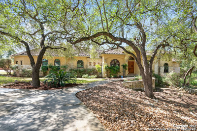 New Braunfels Single Family Home Active Option: 21 Horseshoe Ct