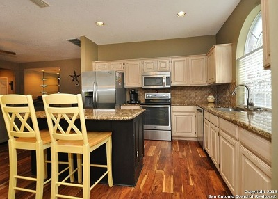 San Antonio Single Family Home For Sale: 2102 Mollys Way Dr
