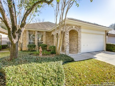 Bexar County Single Family Home Active Option: 19 Cheshire Ct