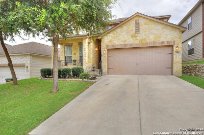 Leon Valley Single Family Home For Sale: 5420 Nutmeg Trail