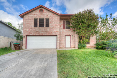 San Antonio Single Family Home Active Option: 11529 Rabbit Spgs