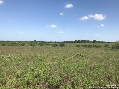Wilson County Farm & Ranch For Sale: Tbd Cr 307