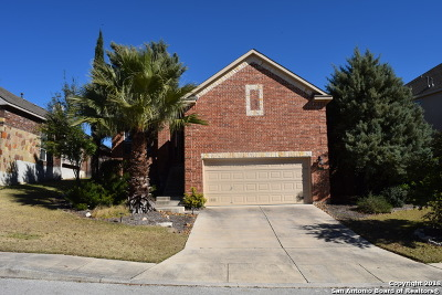 Cibolo Canyons Single Family Home For Sale: 3122 Highline Trl