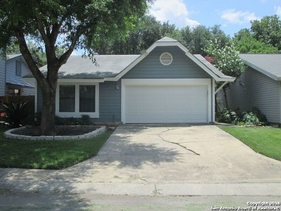 Single Family Home For Sale: 3912 Chimney Springs Dr