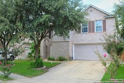 San Antonio Single Family Home Back on Market: 8707 Snow Goose