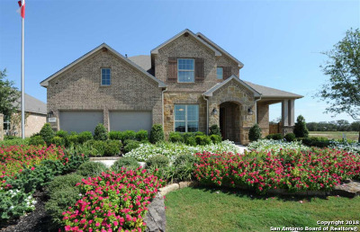 Bulverde Single Family Home For Sale: 3797 Lariat Drive