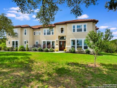 Boerne, Cibolo, Converse, Fair Oaks Ranch, Helotes, Leon Valley, New Braunfels, San Antonio, Schertz, Windcrest Single Family Home For Sale: 14844 Iron Horse Way