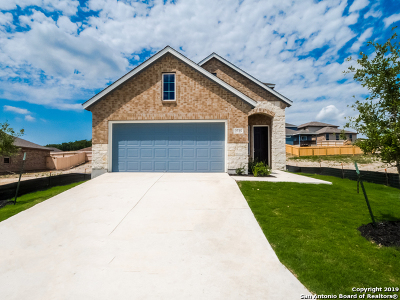 Bexar County Single Family Home For Sale: 2725 Barkey Spings