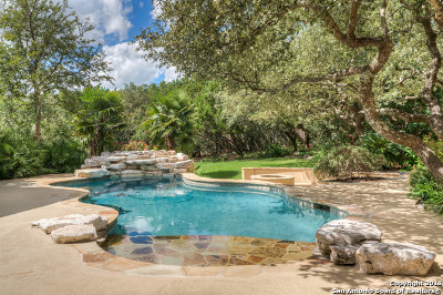 San Antonio Single Family Home For Sale: 306 Champion Falls