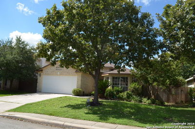 Helotes Single Family Home Active Option: 11915 Peach Crossing