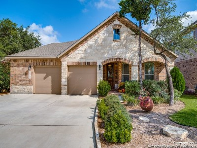 San Antonio Single Family Home For Sale: 28562 Willis Ranch