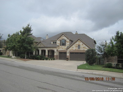 San Antonio Single Family Home New: 17123 Turin Ridge