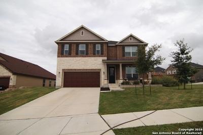 Cibolo Single Family Home New: 404 Landmark Rdg