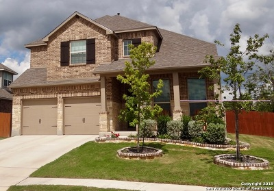 Bulverde Single Family Home New: 30689 Horseshoe Path
