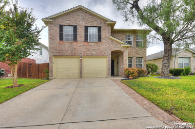 San Antonio TX Single Family Home Active Option: $235,000