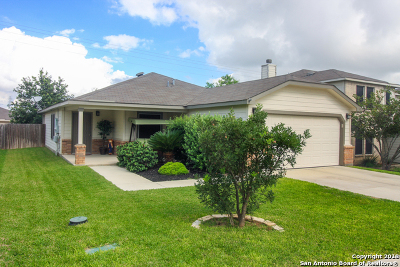 Cibolo Single Family Home Active Option: 300 Willow View