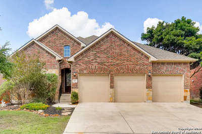 Cibolo Canyons Single Family Home New: 3531 Hilldale Pt