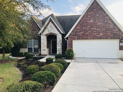 Cibolo Canyons Single Family Home Active Option: 3011 Highline Trail