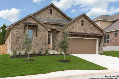 Bexar County Single Family Home New: 217 James Fannin St