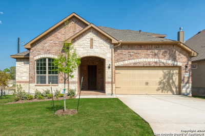 Fair Oaks Ranch Single Family Home New: 29006 Fairs Gate