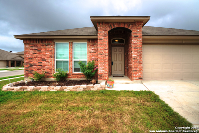 Seguin Single Family Home Price Change: 1045 Sandwell Ct