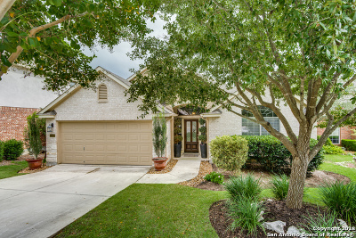 Cibolo Canyons Single Family Home New: 24018 Briarbrook Way