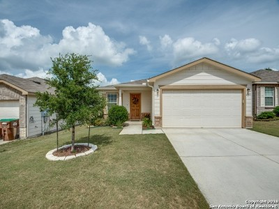 Bexar County, Kendall County Single Family Home New: 27219 Paraiso Manor