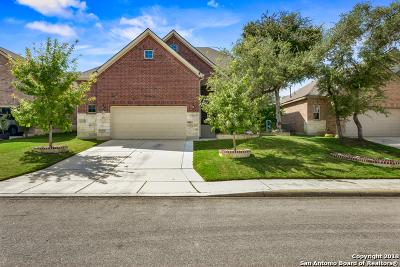 Bexar County Single Family Home New: 5035 Segovia Way