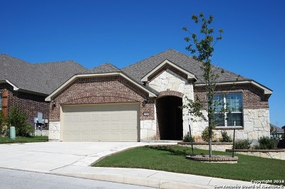 Bexar County, Kendall County Single Family Home New: 27520 Paseo Mesa