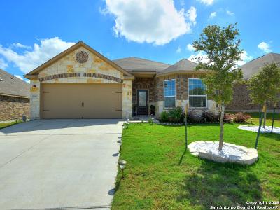 Manor Single Family Home Active Option: 13901 Nelson Houser St