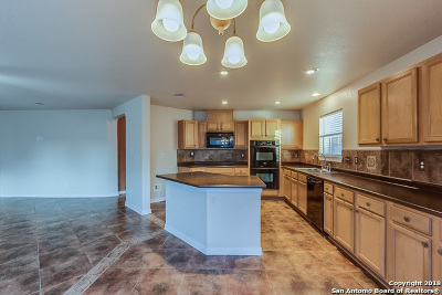 Cibolo Single Family Home New: 125 Springtree Cove