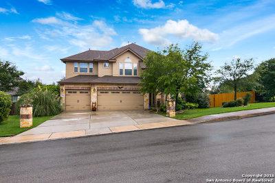 San Antonio Single Family Home New: 3402 Navajo Peace