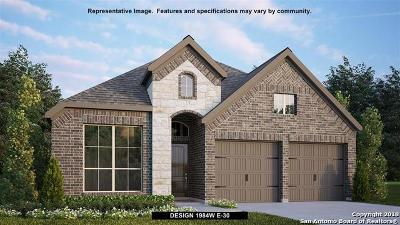 Seguin Single Family Home New: 2993 Coral Way