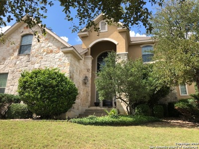 San Antonio Single Family Home New: 2927 Ivory Creek