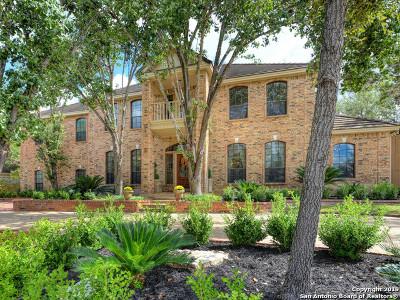 San Antonio Single Family Home New: 534 Chardonnet