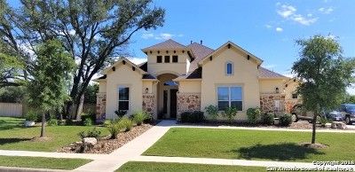 Bexar County Single Family Home New: 3211 Lilly Flower